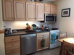 FURNISHED, TOP FLOOR, 2 BEDROOM near DAL, QEll, Downtown