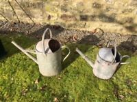 Classic Stainless Steel watering can.