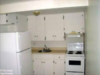 Amherst-avail 1 Sept- 3 bed apt- pet friendly-