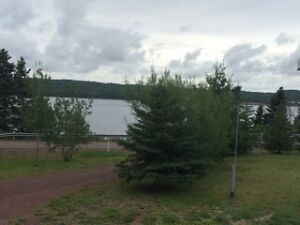 **NEW REDUCED PRICE** Ocean View Property St. John's Newfoundland image 2