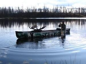 Big Game Guiding Area for Sale