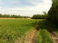 Perfect for hobby farm, or dream home location