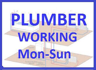 Plumber working Mon - Sun 07534886154