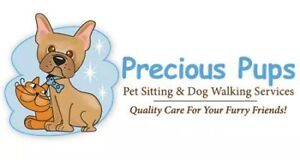 Home Visits for Cats by Precious Pups Pet Sitting Services