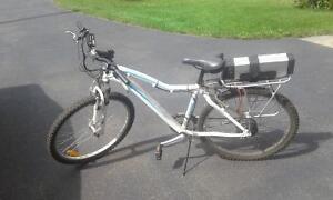 Raleigh 18 Speed Electric Bike