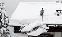 FULLY INSURED AND BONDED snow removal service