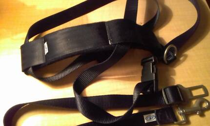 DOG HARNESS X LARGE            ( AS NEW)