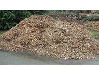 FREE - Wood chippings / mulch