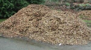 Wood chips or mulch