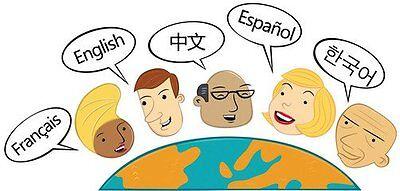 Language service-English Japanese Chinese-translation/education/guide