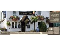Friendly Pub requires Bar person or Couple! *Live in available.*
