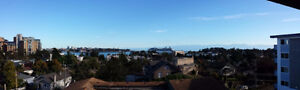 **PANORAMIC OCEAN VIEW** - 6 Minutes to Downtown!