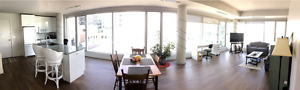 Modern Conveniently Located Downtown Apt Sublet