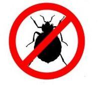 Exterminateur professionnel : punaises, blattes, souris, rats