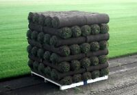 *New Lawn In Hours*Sod Pros*New Grass Installation*Concrete Pros
