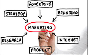 Professional Marketing Services offered