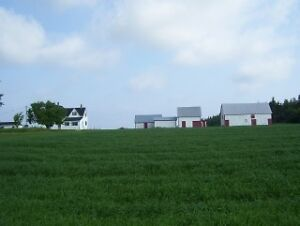 3.8 acres Mini farm, 20 minutes east of city!