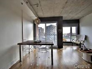 Huge 1 bedroom Loft style apartment. $150 discount for 1st month