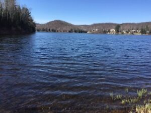 1.75 Acre Residental Lot on Bently Lake