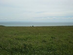 Beautiful Waterfront Land At An Awesome Price!
