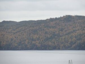 Lovely Home just 10 minutes from Clarenville $189,900 St. John's Newfoundland image 14