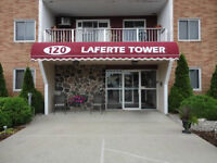 AMHERSTBURG UPDATED CONDO, GREAT FOR RETIREES OR INVESTORS