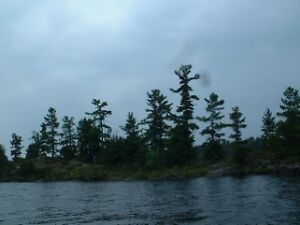 Two Acre Vacant Island in Deer Bay on French River. Alban, Ont.