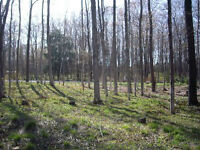 22 Blair's Trail Building Lot for sale, Huron Twp, ON