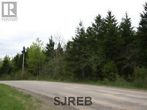 305 Acres of land about 8 minutes from Sussex, N.B!!