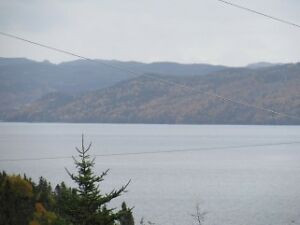 Great Home,Great Price! Ivany's Cove 10 Mins East of Clarenville St. John's Newfoundland image 3