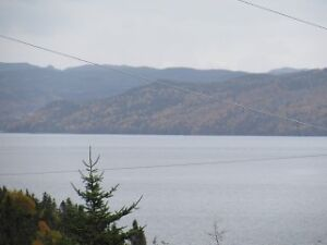 Land for Sale in Ivany's Cove - $19,900- 10 Mins East Clarenvile St. John's Newfoundland image 3