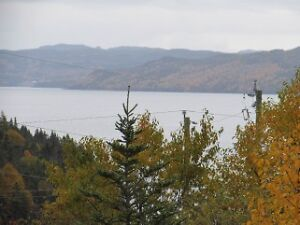 Land For Sale Just Outside Clarenville - $19,900