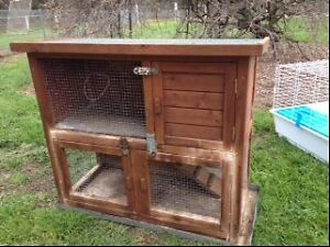 Two used wooden guinea pig cages and accessories Elmore Bendigo Surrounds Preview