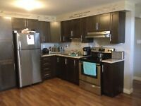 One bedroom apartment in Southlands available July 15