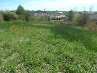 1 Acre With Many Possibilities