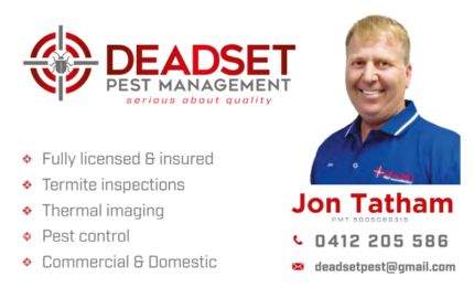 Pest Control and Termite Inspections