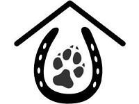 Pet and Horse care services daytime or weekends available