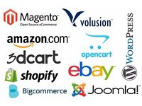 Interviewing now! eCommerce-savvy guru sought! Amazon, Shopify, Pressable & eBay
