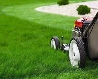 Student does Lawn Cutting