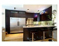 Furnished luxury 2-bed downtown Ottawa condo. Walk to Parliament