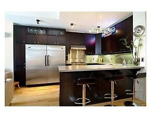 Luxury downtown 2-bedroom condo. Short walk to Parliament Hill!