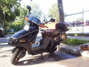 scooter honda elite 250