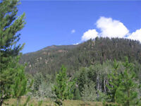 20 acres in Brett Creak Meadows, BC