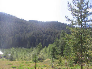20 acres, dividable in 3 lots - Marshall Lake Road