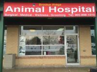 Veterinary Assistant/ receptionist required