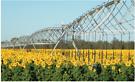 Off grid farm irrigation system $830 pm cheaper than a power bill Brisbane City Brisbane North West image 2