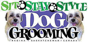 Sit, Stay, Style Dog Grooming