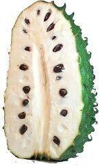 GUANABANA-annona-muricata-ENORME-FRUTA-semillas-seeds
