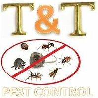 T&T PEST CONTROL_RELIABLE  & AFFORDABLE_647-861-2198