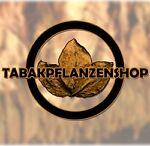 Tabakpflanzenshop